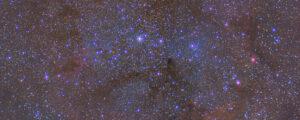view of night sky showing the elepahnet trunck nedula